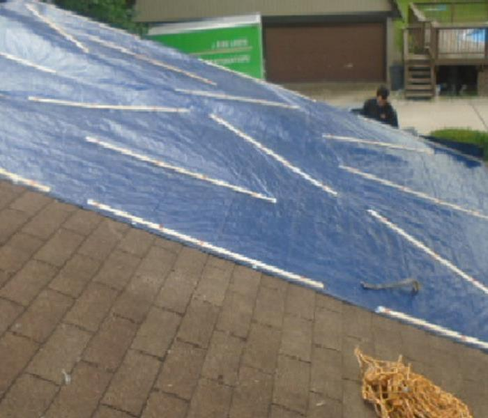 Emergency Roof Tarp Service For Fallen Trees After