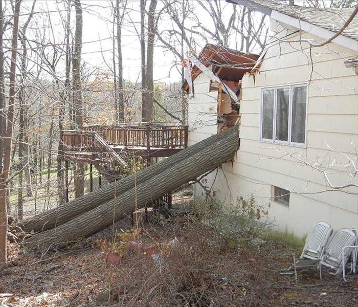 Water Damage From Fallen Tree Chicago Ridge