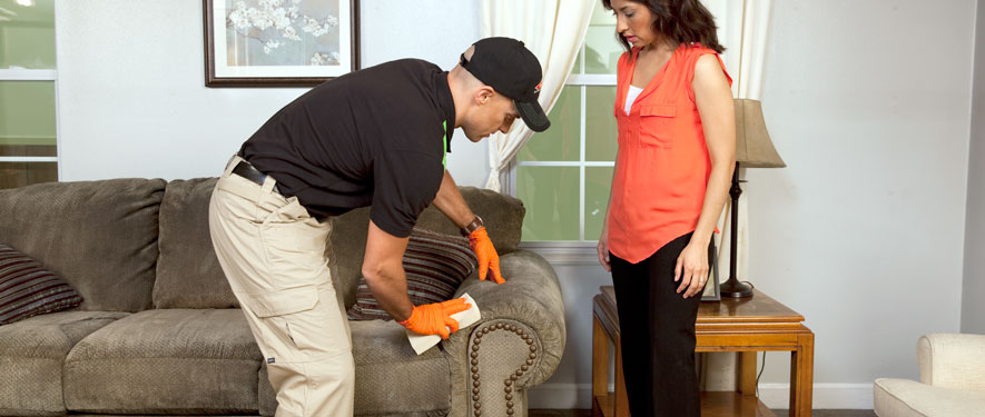Oak Lawn, IL carpet upholstery cleaning
