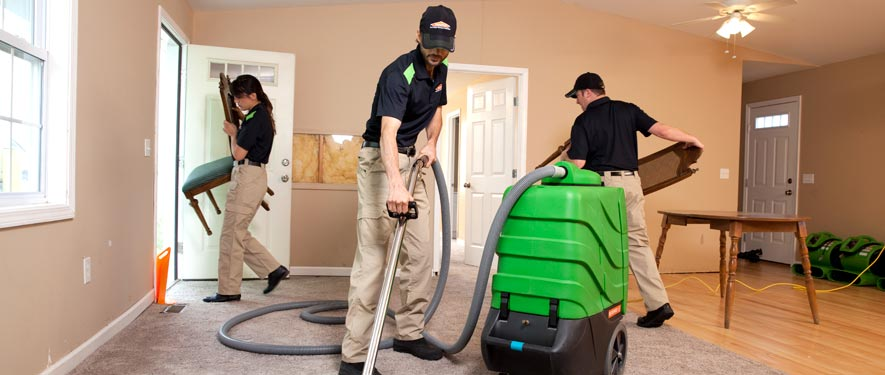 Oak Lawn, IL cleaning services
